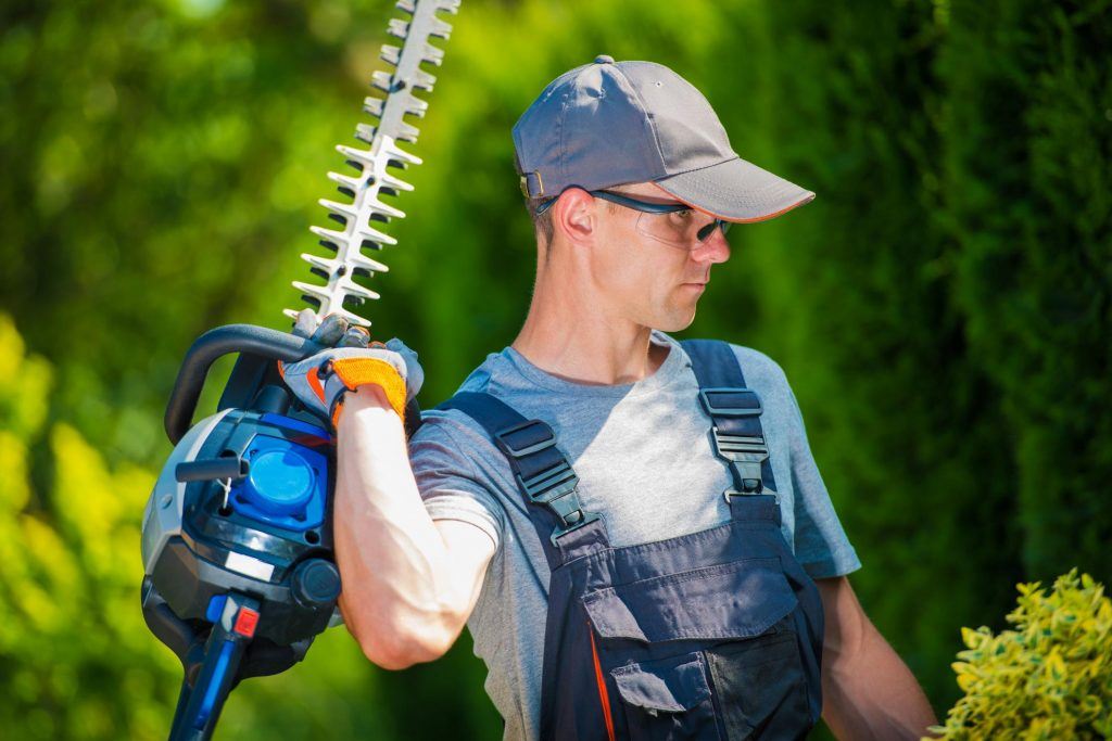 Tree Service Pro